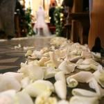 corsia di petali