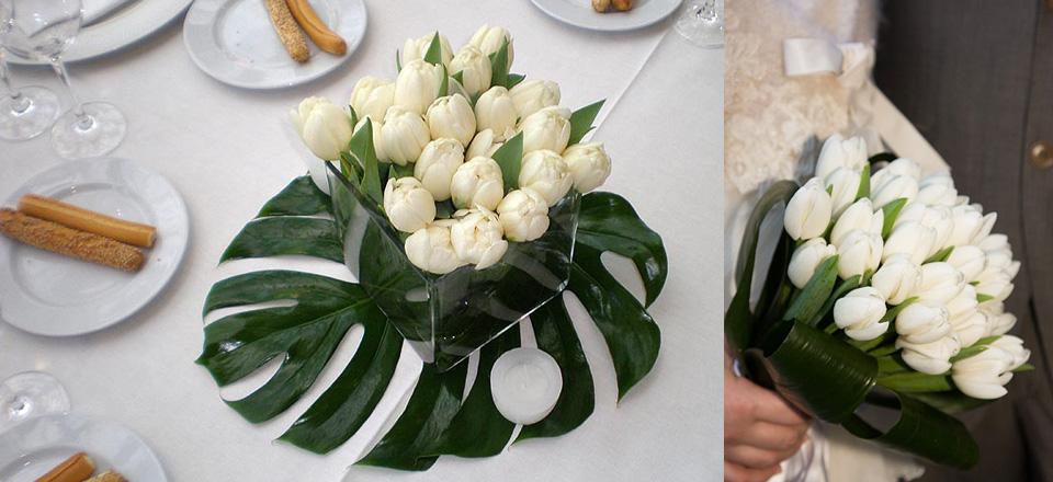 20_tulipanibianchi